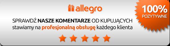 DZIECKOLANDIA.pl - komentarze Allegro